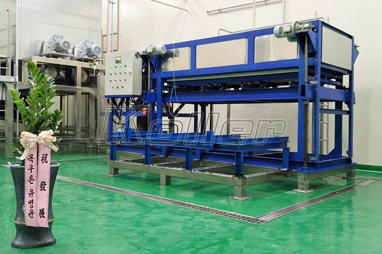 Direct Cooling Ice Block Machine in Korea (1)