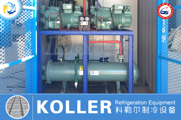 20GP Containerized Cold Room (4)