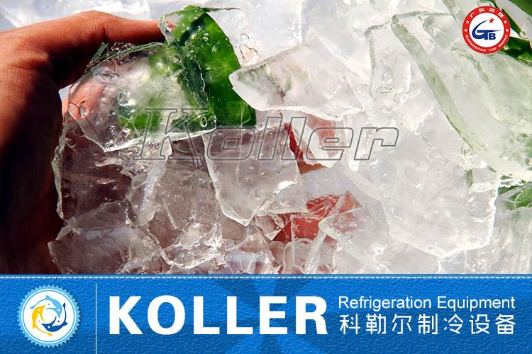 Plate Ice Machine PM200 (1)